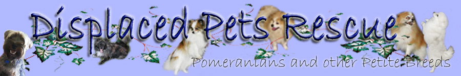 Displaced Pets Rescue, Inc.